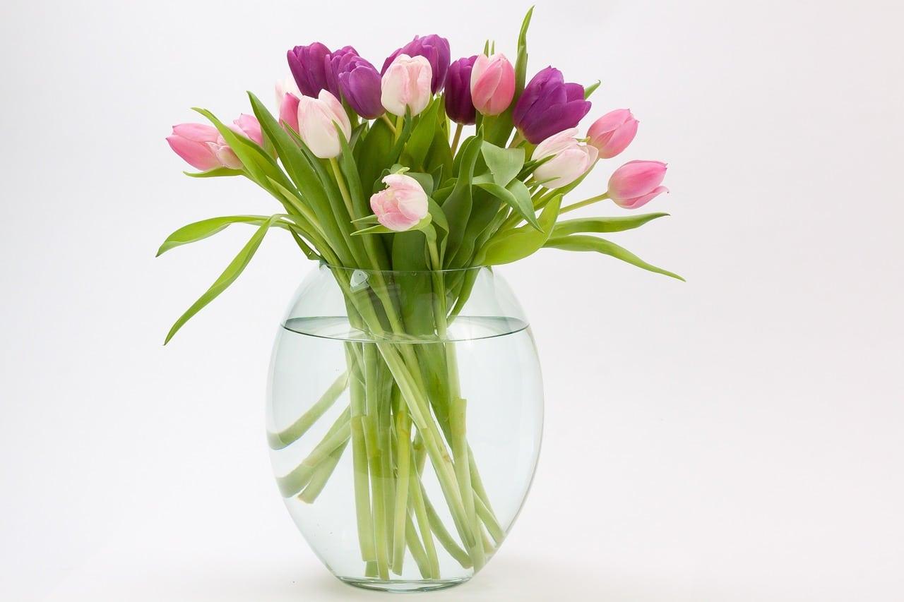 Entretien bouqet de fleurs en vase