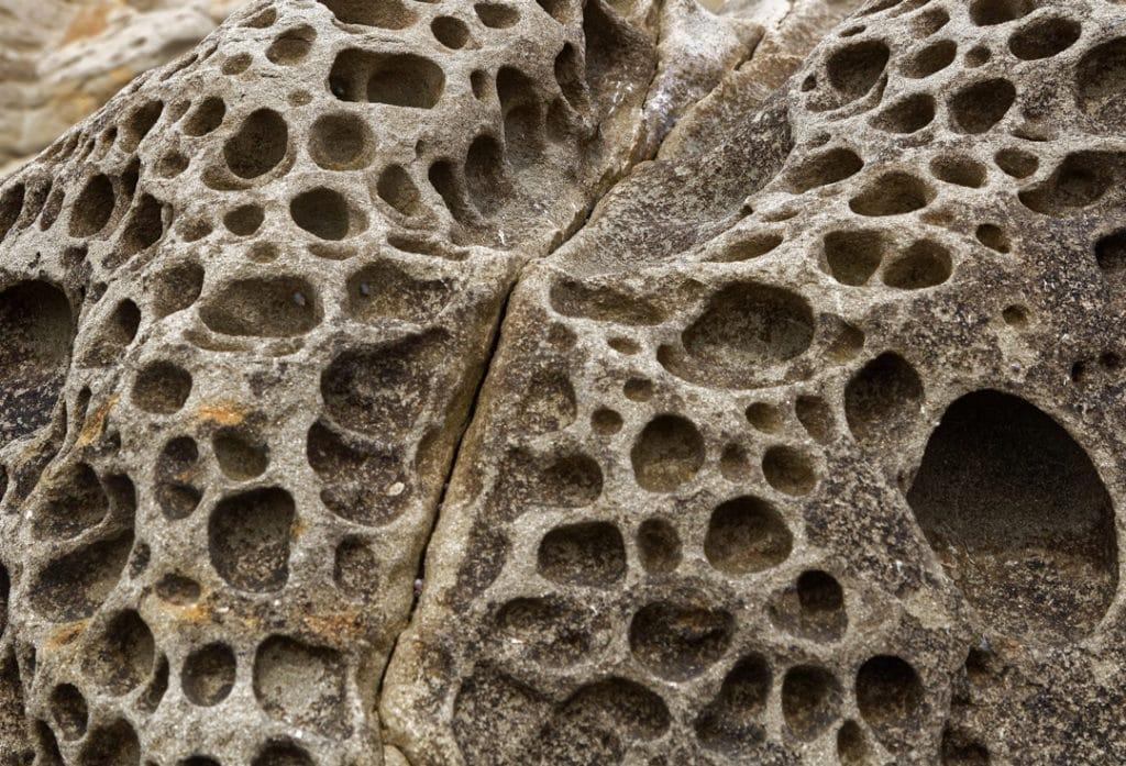 trypophobie ou la peur des trous