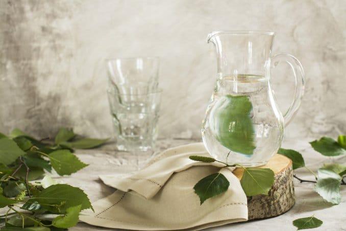 eau de bouleau consomation