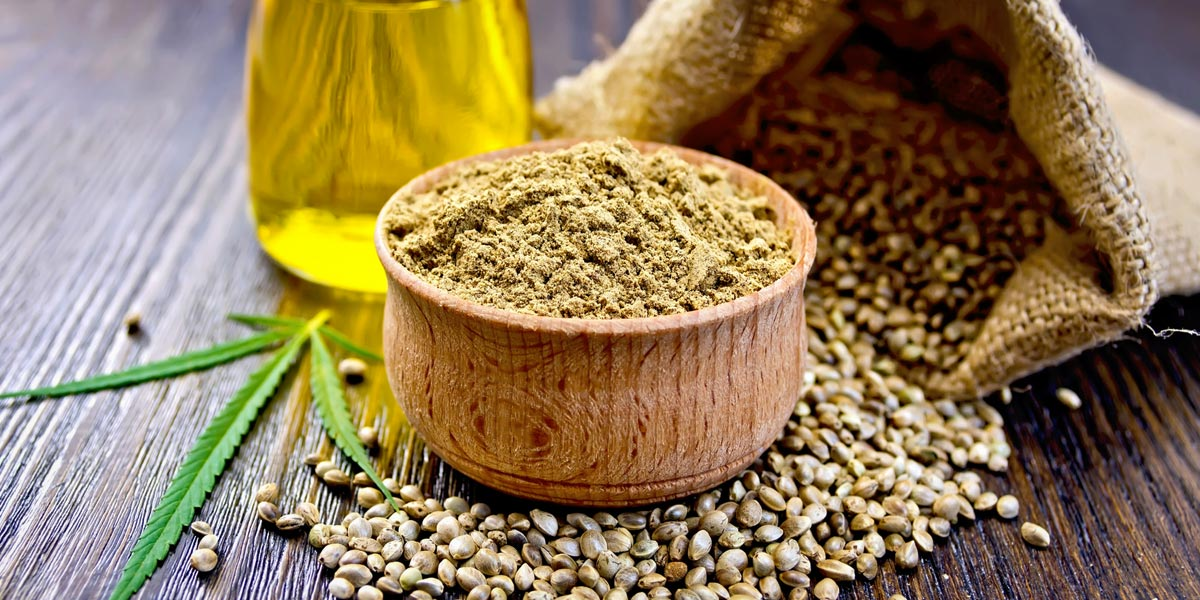 protéines de chanvre poudre