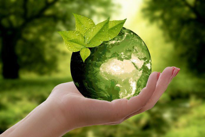 gestes ecologiques au quotidien faciles a faire 2