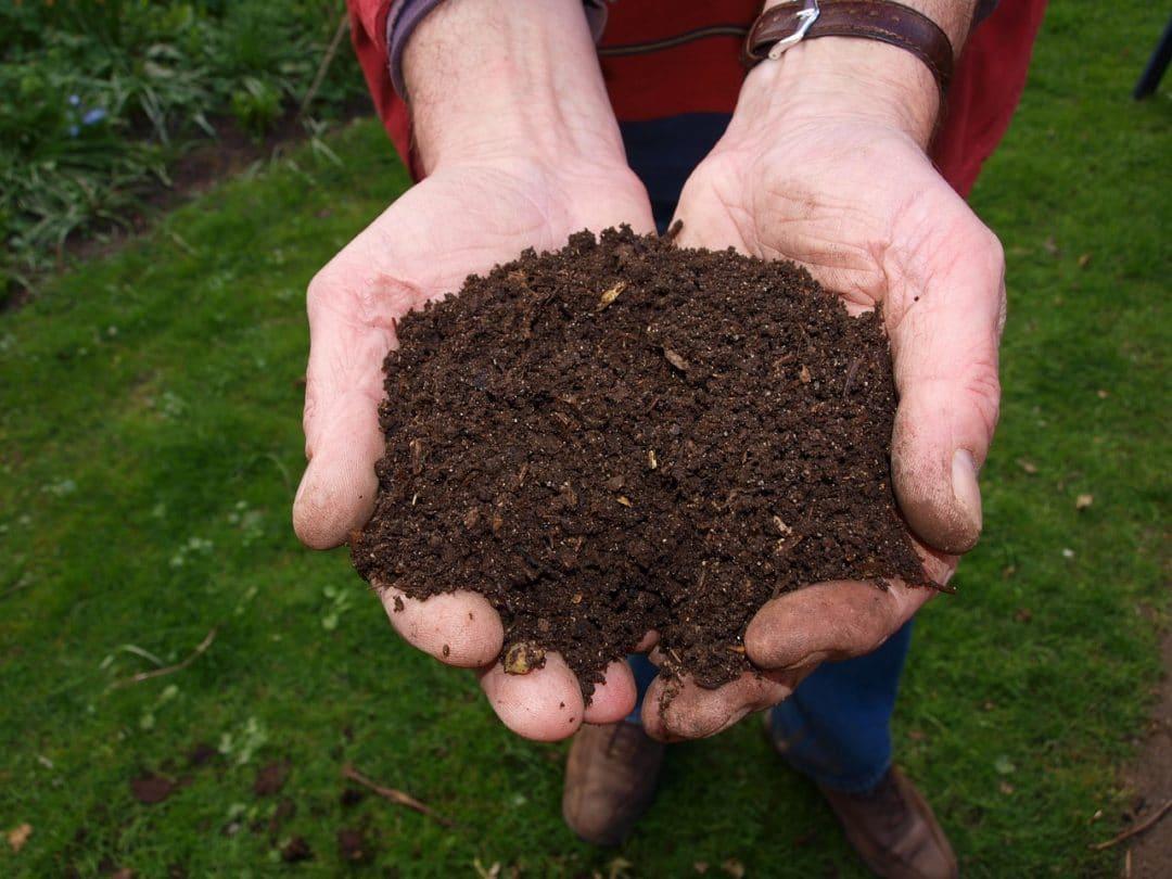 gestes ecologiques au quotidien faciles a faire compost