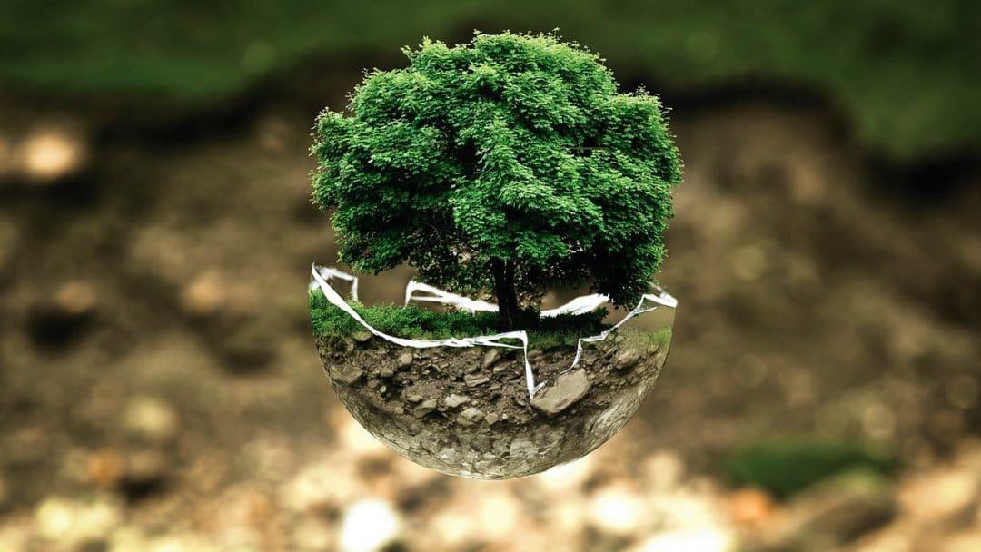gestes ecologiques au quotidien faciles a faire