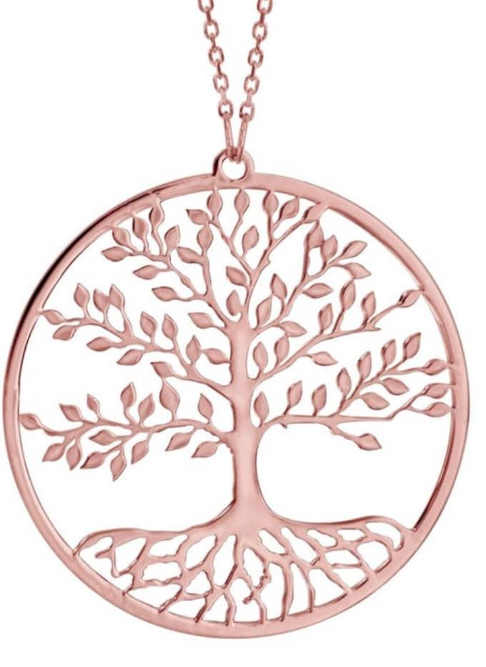 Signification de l'arbre de vie