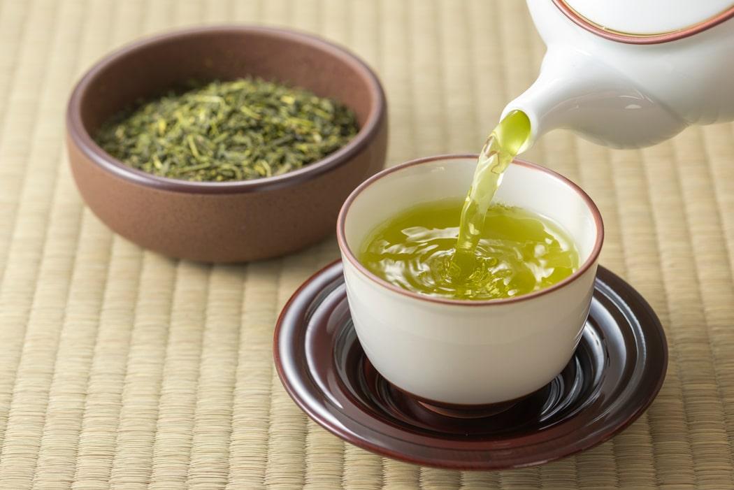 plantes brule graisse thé vert